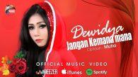 Permalink to Dewidya – Jangan Kemana-mana (Remix)