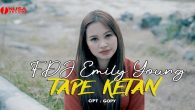Permalink to FDJ Emily Young – Tape Ketan
