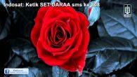 Permalink to NOAH – Dara